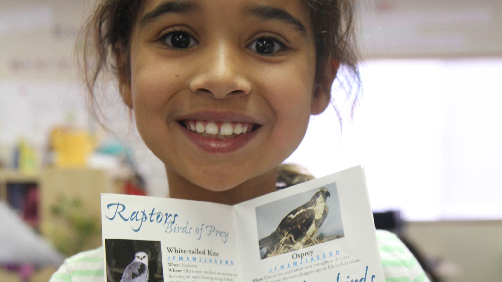 A young girl holds up a birds of prey pamphlet